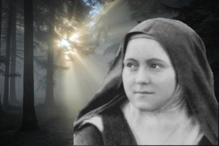 Santa Teresita Lisieux