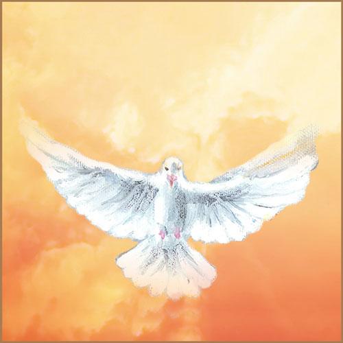 8 Febrero 2021 –  Llamado de Amor y de Conversión de Dios Espíritu Santo